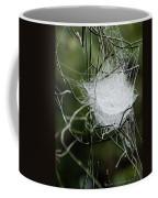 Spider Web Basket Coffee Mug