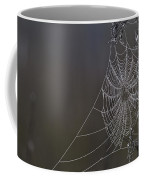 Spider Web Covered In Dew Drops Coffee Mug