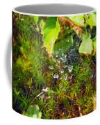 Spider Webs At The Farm Coffee Mug