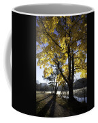 Spirit By The Lake Coffee Mug