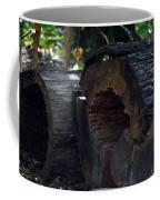 Split A Piece Of Wood Coffee Mug