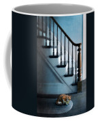 Spooked Cat By Stairs Coffee Mug