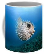 Spotted Porcupinefish Coffee Mug