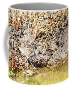 Spotted Sandpiper At The Canal Coffee Mug