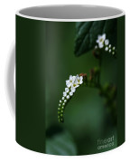 Spray Of White Flowers Coffee Mug