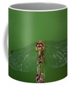 Spread Your Wings And Fly Away Coffee Mug