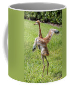 Spread Your Wings And Try To Fly Coffee Mug