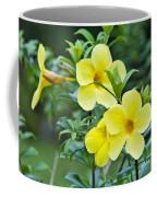 Spreading Petals On Tall Stemmed Bright Coffee Mug