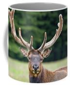 Spring Antlers Coffee Mug
