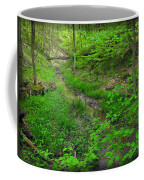 Spring At Cleveland Metro Park Coffee Mug