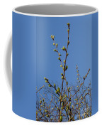 Spring Buds Coffee Mug