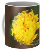 Spring Chick Coffee Mug