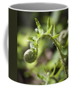 Spring Fern Coffee Mug