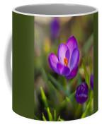 Spring Glow Coffee Mug