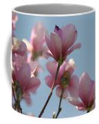 Spring Has Sprung Coffee Mug