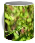 Spring Hopper Coffee Mug