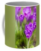 Spring In The Garden Coffee Mug