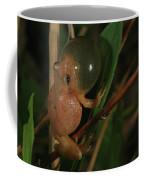 Spring Peeper Coffee Mug by Bruce J Robinson