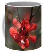 Spring Pop Coffee Mug