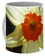 Spring Shines Brightly Coffee Mug