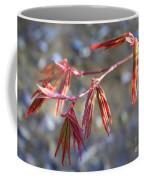 Springtime Japanese Maple Leaves Coffee Mug