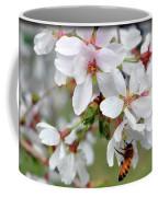 Springtime Weeping Cherry Tree Coffee Mug