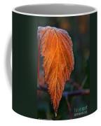 Sprinkled Frost Coffee Mug