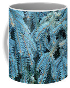 Spruce Conifer Nature Art Prints Trees Coffee Mug