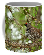 Spruce Grouse Coffee Mug