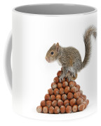 Squirrel And Nut Pyramid Coffee Mug