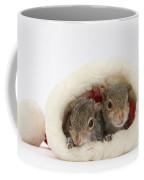 Squirrels In Santa Hat Coffee Mug