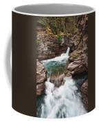 St. Mary Falls Glacier National Park Coffee Mug