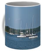 St. Mary's River Coffee Mug