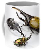 Stag Beetles Coffee Mug