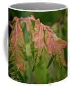 Staghorn Sumac Coffee Mug