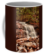 Stairs Falls Coffee Mug