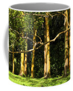 Stand Of Rainbow Eucalyptus Trees Coffee Mug
