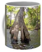 Standing Firm Coffee Mug