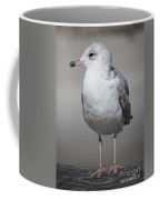 Standing Seagull Coffee Mug