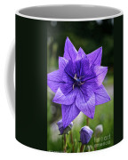 Star Balloon Flower Coffee Mug
