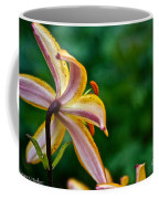 Star Lily Coffee Mug