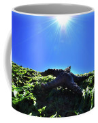 Stars From Below Coffee Mug