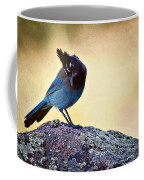 Stellers Rock Coffee Mug