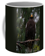 Steller's Sea Eagle Coffee Mug