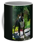 Stephanie Coffee Mug