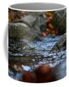 Stepping Stone Coffee Mug