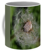 Stink Bug On Dandelion Seed Head Coffee Mug