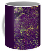 Stone Face At Hossa With Stone Age Paintings Coffee Mug