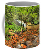 Stone Mountain Lower Falls Coffee Mug
