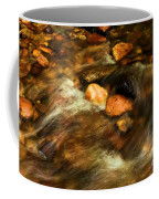 Stone Mountain River Rocks Coffee Mug